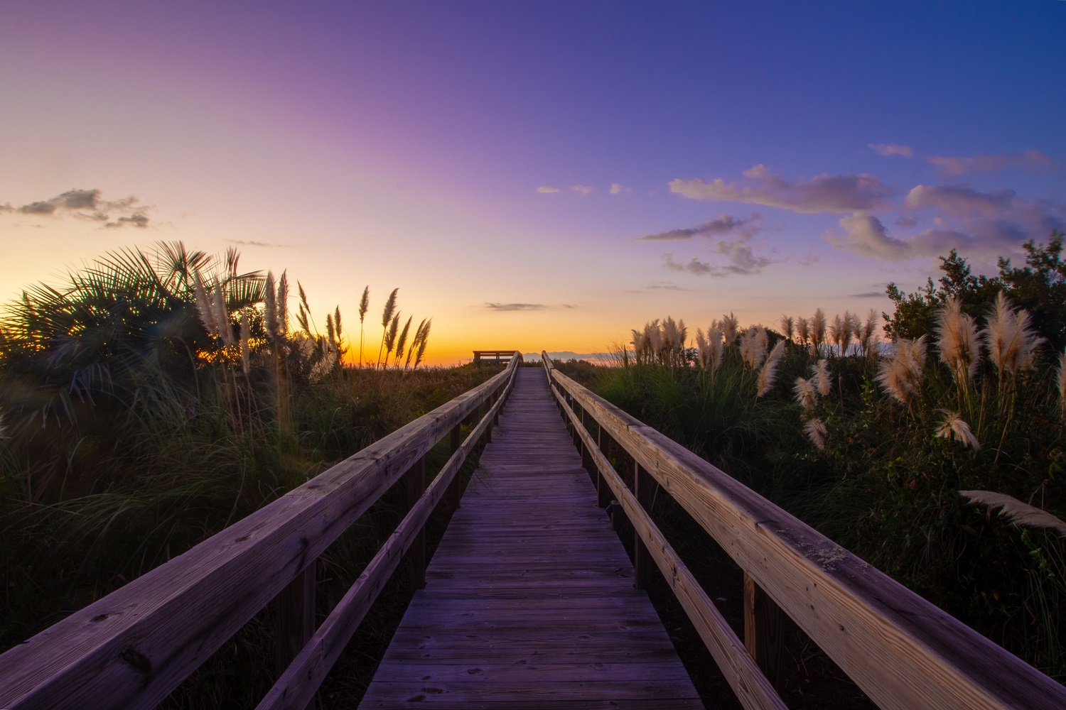 3 of the Best Beaches in South Carolina for Families