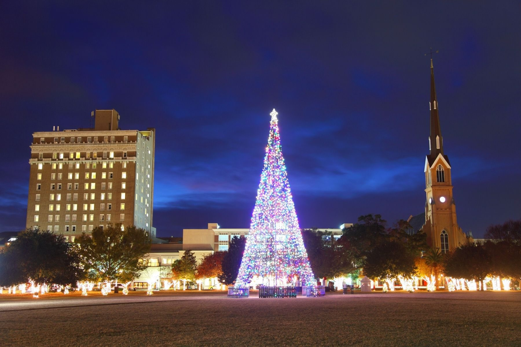 A large tree with lights for Christmas in Charleston